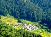 Dehradun-Pantwari-2-min