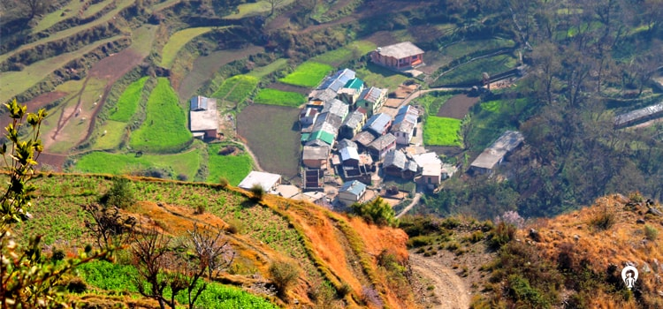 Dehradun-Pantwari-slider-min