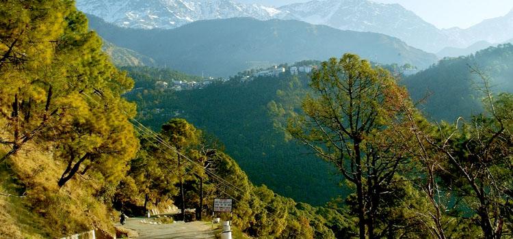Dharamsala1