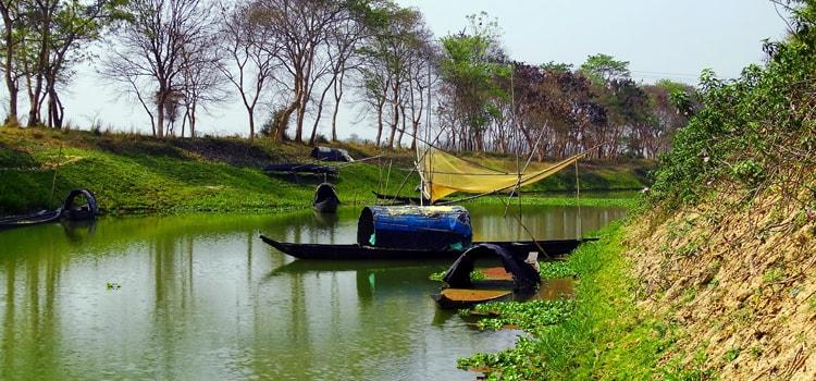 Assam-Slider3