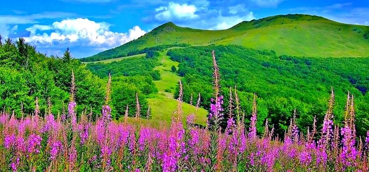 Kashmir-slider3