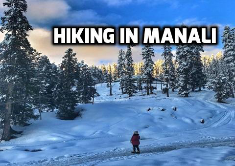hiking-in-manali