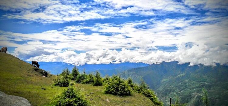 hiking-manali-slider1