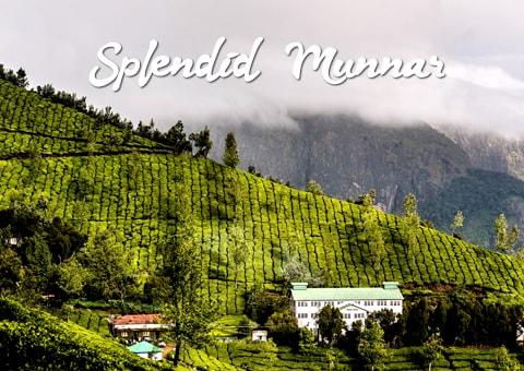 Splendid-Munnar-Featured-image
