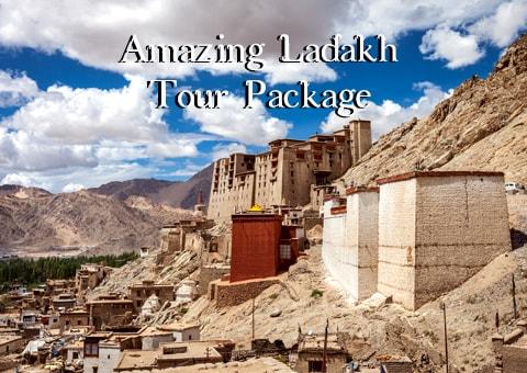 Amazing-Ladakh-Tour-trip