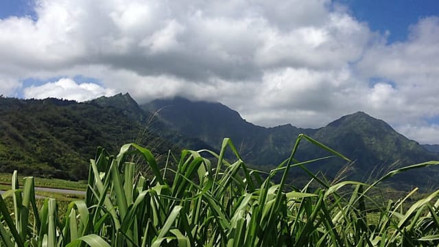 Kauai, Hawaii - Neil Humphrey