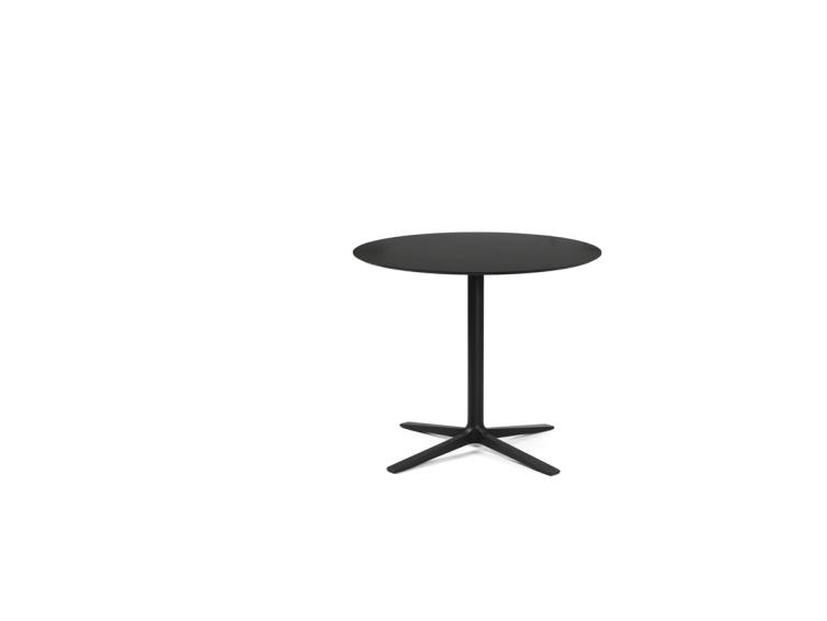 Trifidae - Trifidae stolovi outdoor