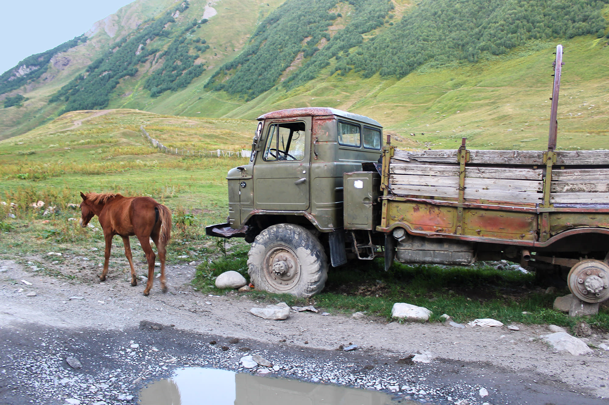 An old Kamaz and a horse