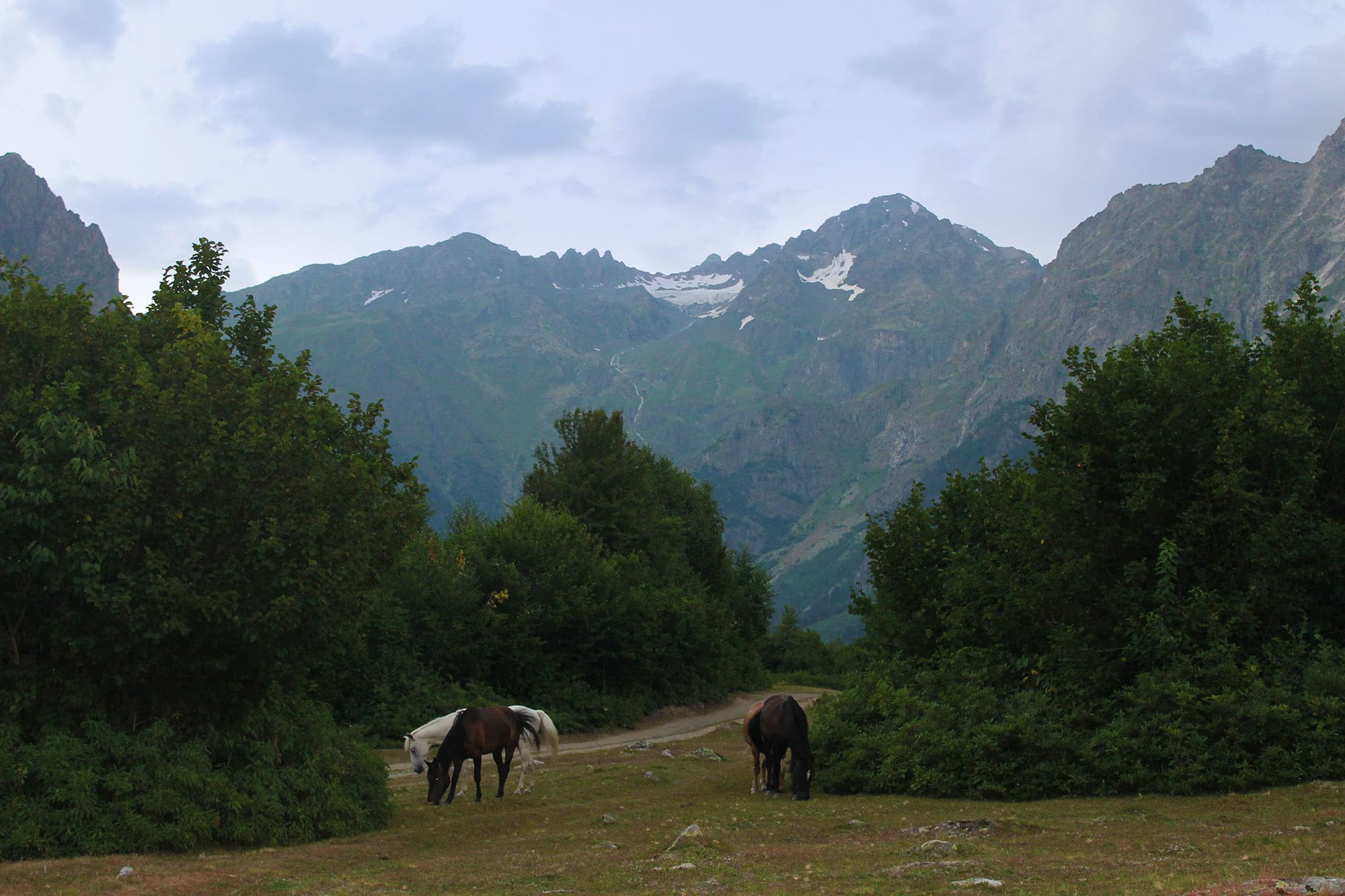 The road to the glacier