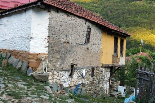 The village of Malovishte