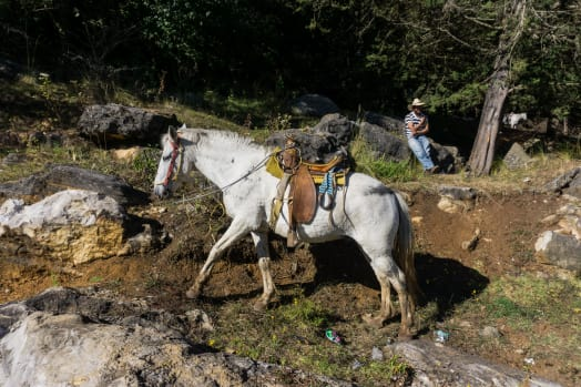 Chiapas, Mexico: Exploring Indigenous Communities on Horseback
