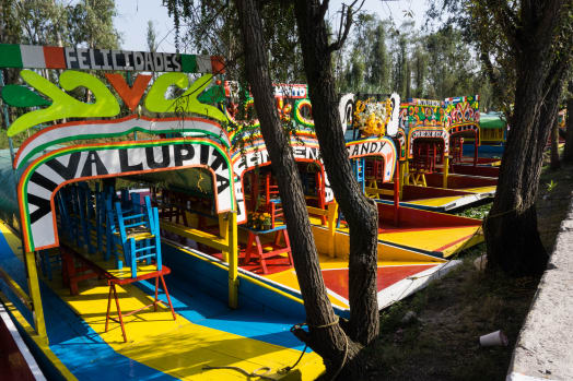 7 Awesome Things to do in the Neighborhood Xochimilco, Mexico City