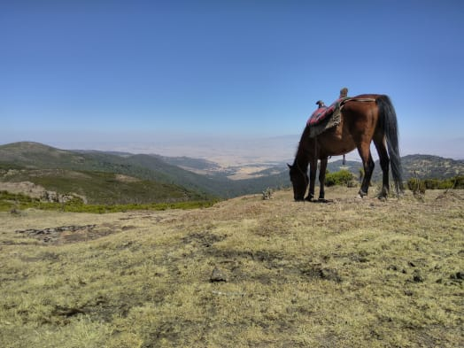 A Week-Long Trail Ride in the Ethiopian Bale Mountains - Where Globalization Has Nothing to Claim