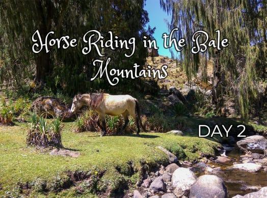 Surprises While Horseback Riding in Ethiopia
