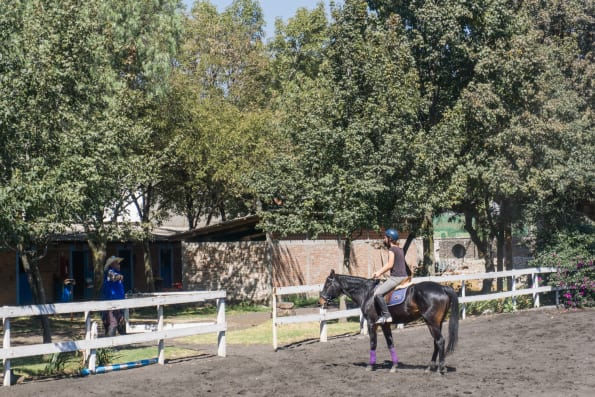 riding at the stables