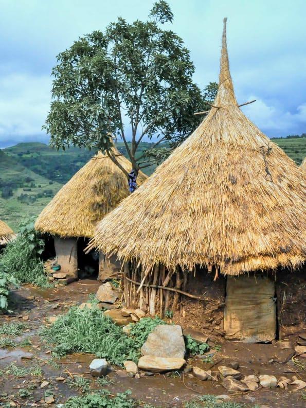 ethiopian hut
