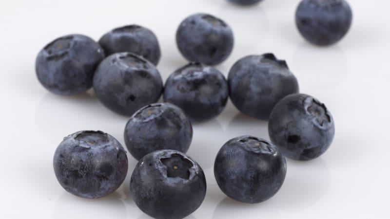 Blåbærsorbet