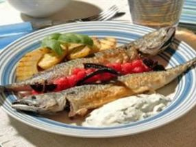 Stekt makrell med urtekesam, krydderkokt rips  og grillet potetsalat