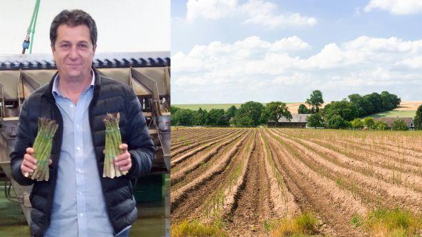 Tett på aspargesbonden