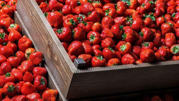 Jordbær holder deg ung og frisk
