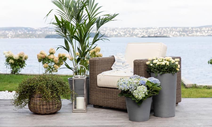Hyggelig veranda, men vakker utsikt og flotte planter