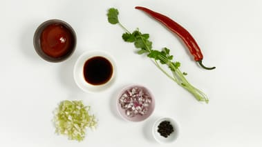 Skrell og finhakk rødløken og fenikkelen. Skrell hvitløksfedd og fjern frøene i chilien. Støt chili, hvitløk, koriander og krydder i en morter. Ha det i en kjele sammen med soyasaus, eddik og sukker. La det koke opp og putre i et par minutter. Ta av varmen og la det kjølne. Bland i ketchup og sett kaldt. (Sausen kan også tilberedes uten koking, men får da noe kortere holdbarhet og mildere smak).  Tips: Hell sausen på rene glassflasker, så holder den seg i minst to uker.