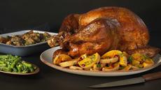Thanksgivingkalkun
