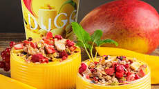 Mango Smoothiebowl med DUGG