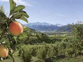 Syd-Tyrol - Europas Hardanger