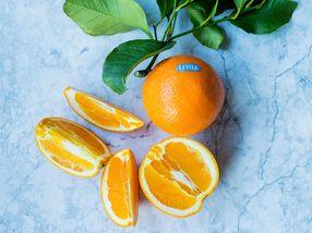 Friske fakta om appelsinen
