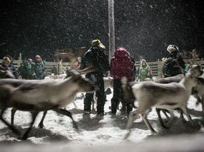 De åtte samiske årstidene