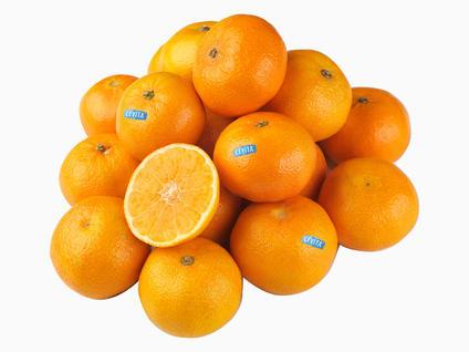Klementiner