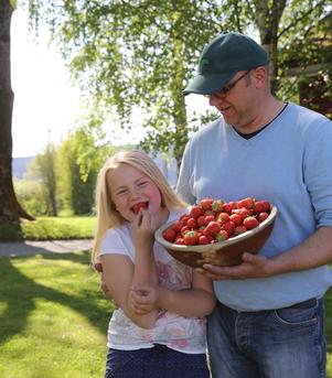 Jordbær fra Buskerud