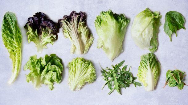 Salatskolen