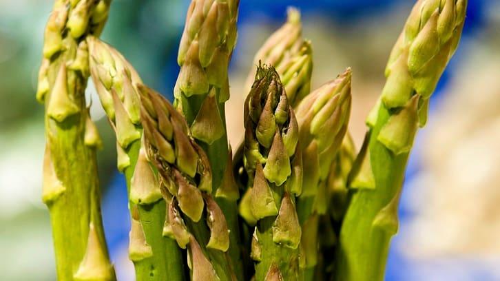 Vårens beste grønnsaker