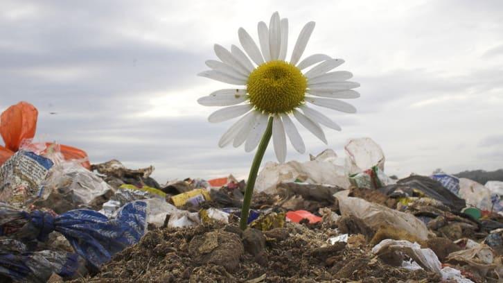 25 millioner kroner til arbeid mot plastforsøpling