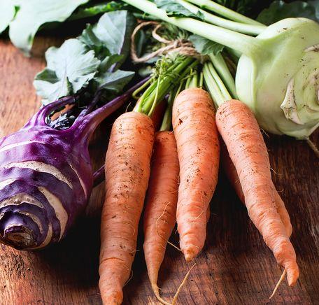 """Illustrasjonsbilde for """"Slik dyrkes økologiske grønnsaker"""""""