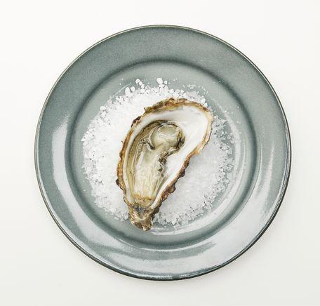 """Illustrasjonsbilde for """"Hvordan åpne østers?"""""""