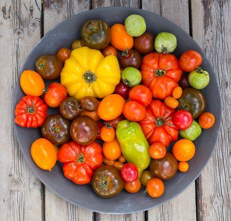 """Illustrasjonsbilde for """"5 grunner til å spise tomat"""""""