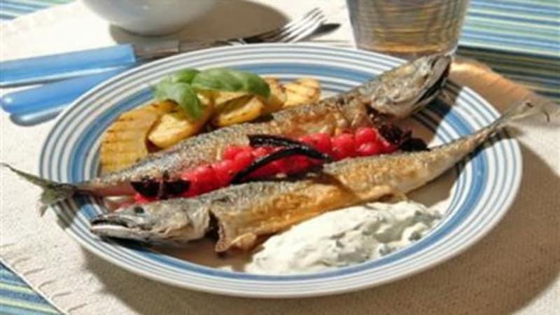 Stekt makrell med grillet potetsalat