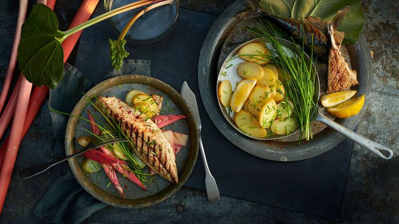 Grillet makrell med rabarbra og bakt nypotet