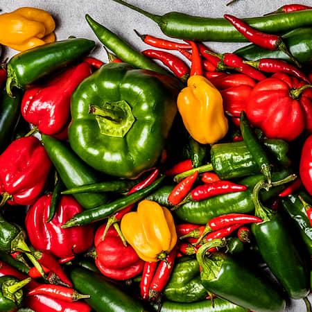 Paprika og chili