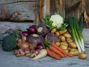 Det beste du kan lage av høstens delikate råvarer
