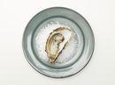 Hvordan åpne østers