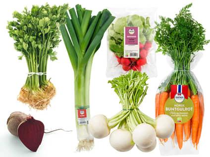 Norske  grønnsaker  i bunt