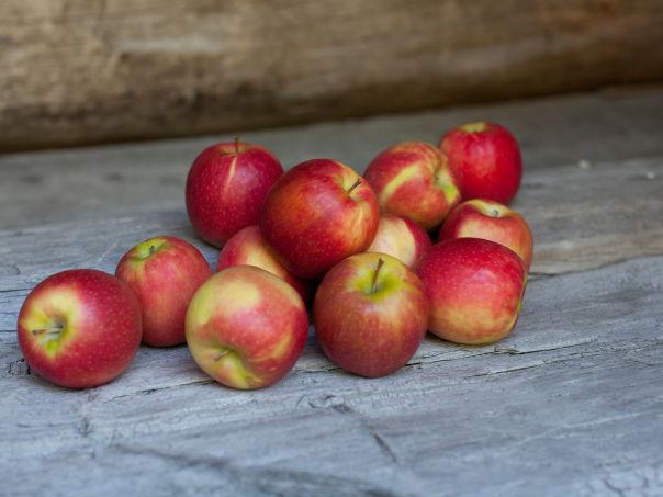 Epler og epledagen