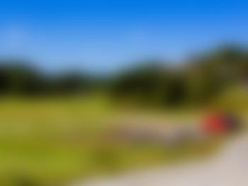 Holte Gård - Drangedal