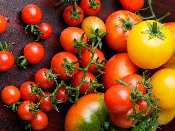 Tomatskolen