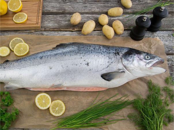 Urteguide til fisk – slik setter du prikken over i-en
