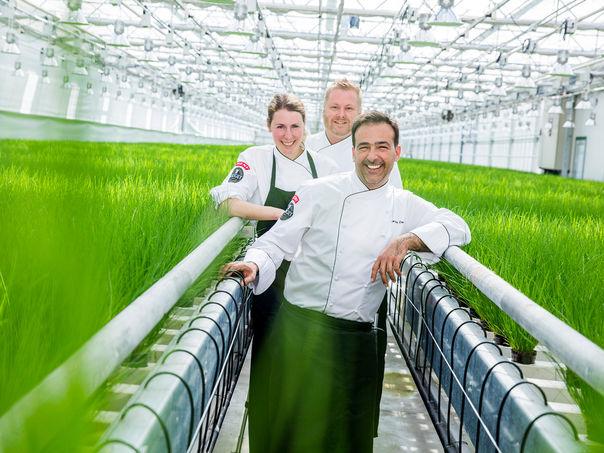 MENY løfter norsk matkultur